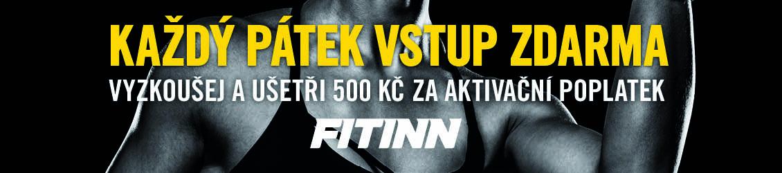 Fitt-Inn-1130x250-2.jpg
